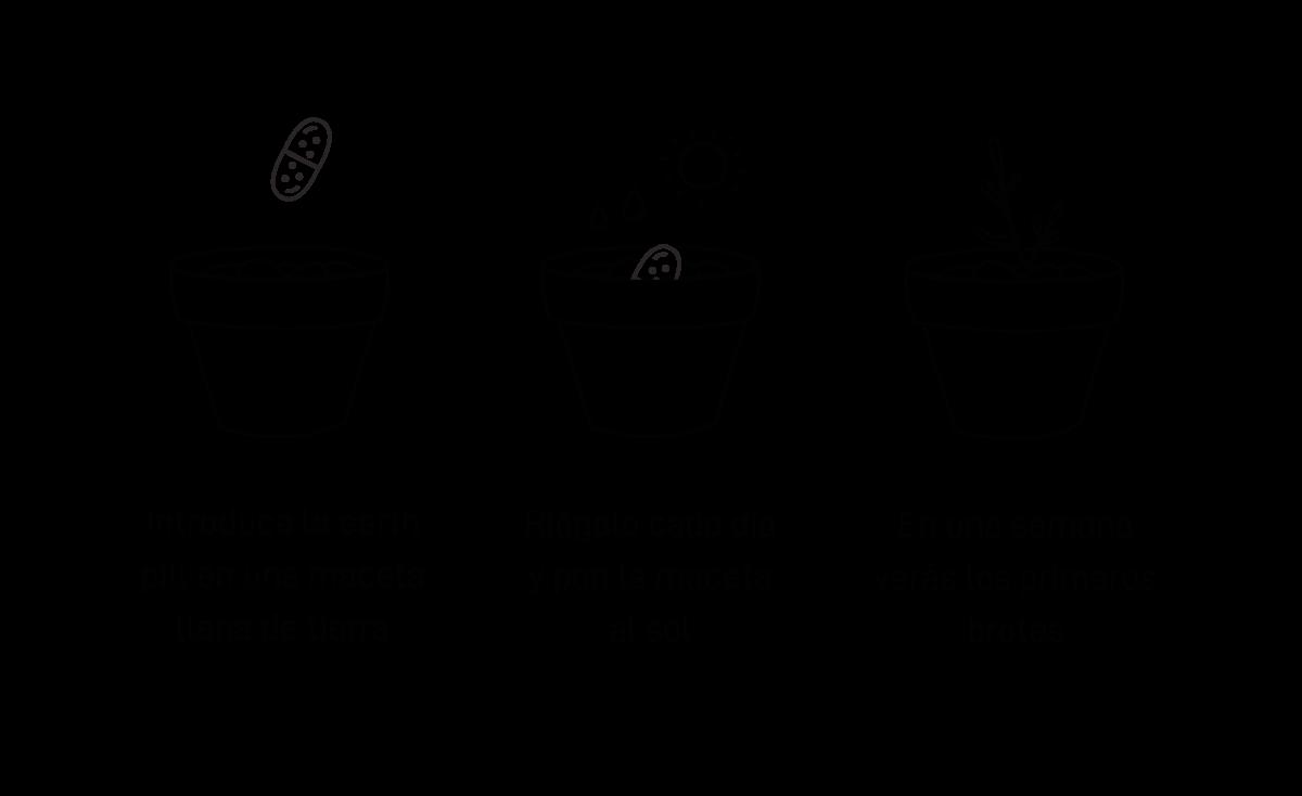 kit-de-siembra-regalo-promocional-sostenible