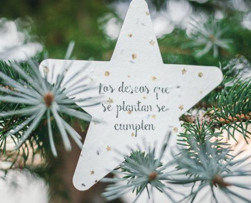 campaña navidad original