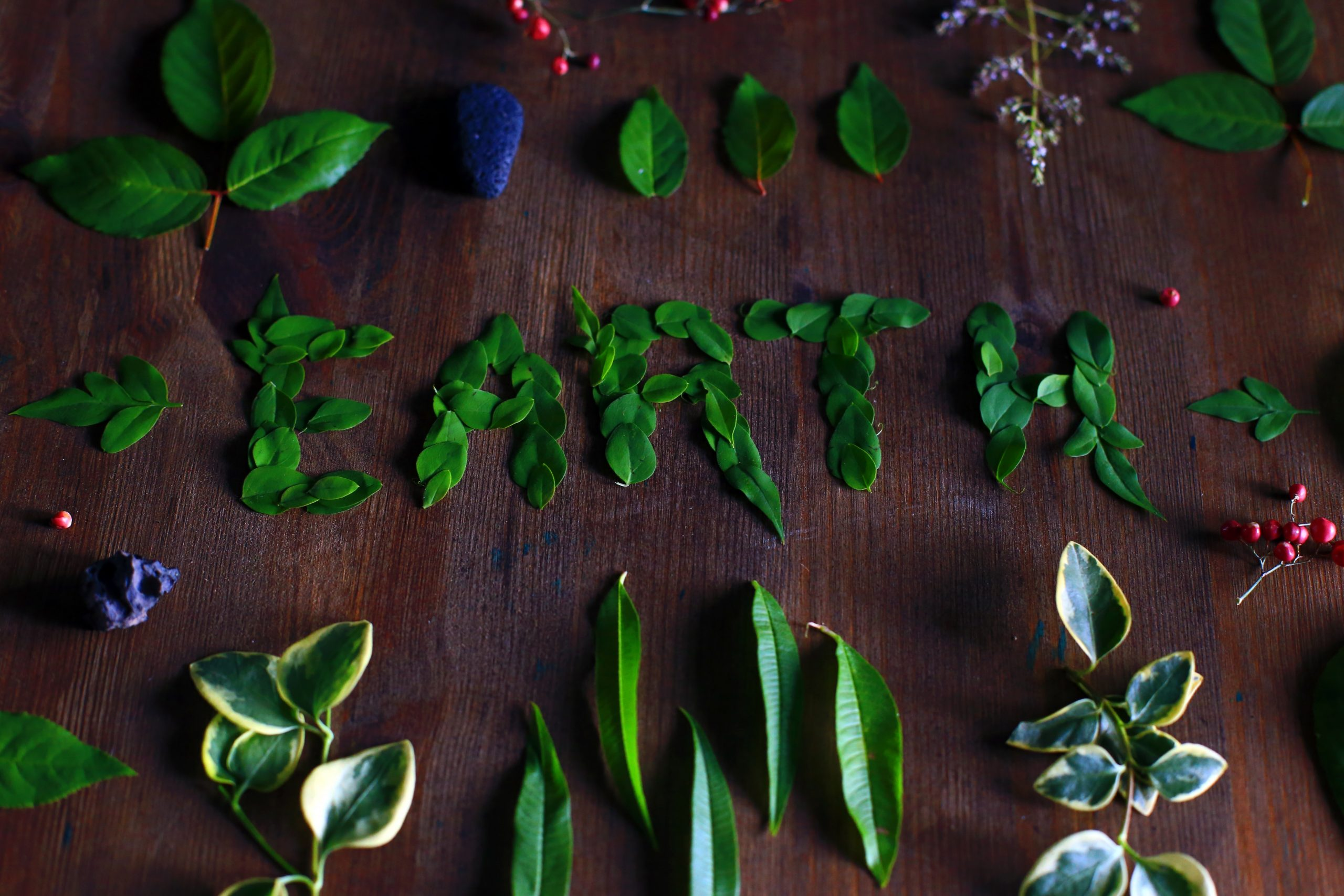 ¿Y tú que vas a hacer por el Día del Medio Ambiente?