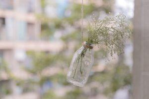 dia medio ambiente papel semillas