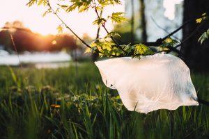 alternativas bolsas de plastico