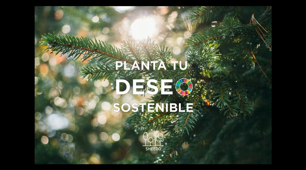 Deseos sostenibles