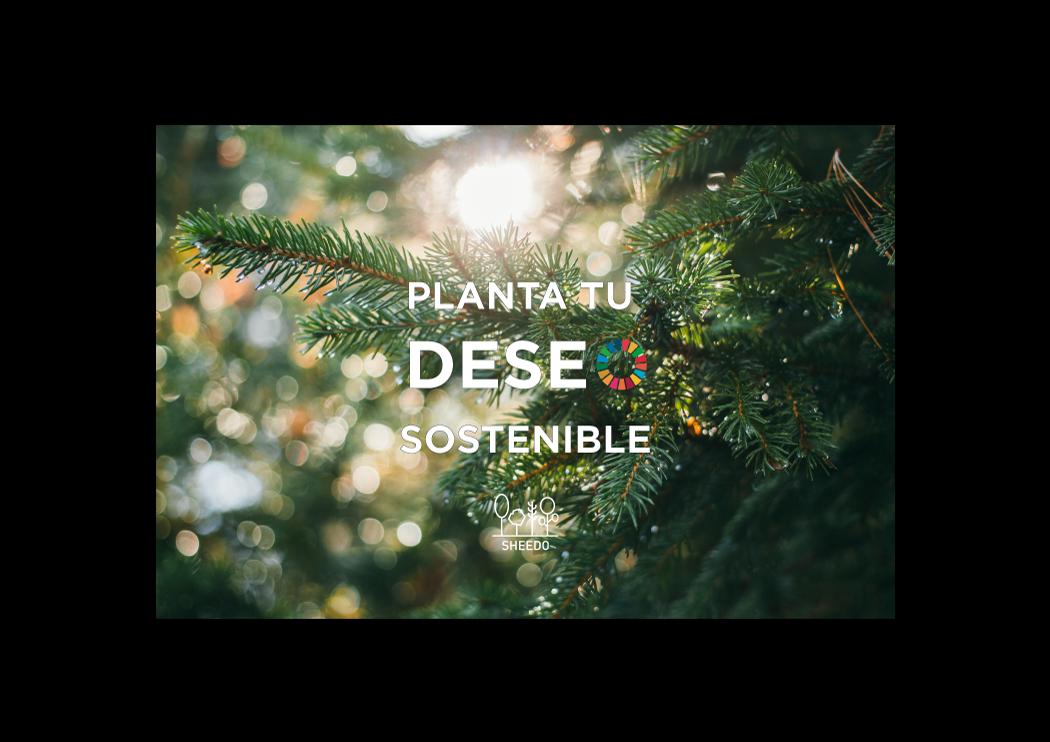 Las empresas españolas sostenibles plantan su deseo con Sheedo