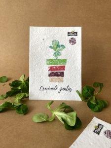 papel semillas para empresas merchandising sostenible