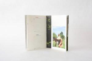 papel semillas para empresas merchandising sostenible cuaderno plantable