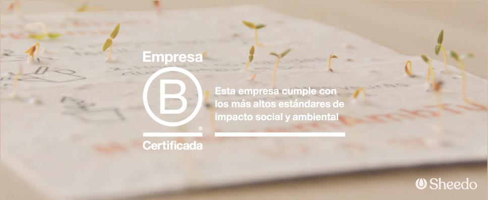 Sheedo: la primera empresa española de papel que es B Corp