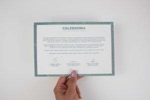 Tarjeton plantable Calzedonia
